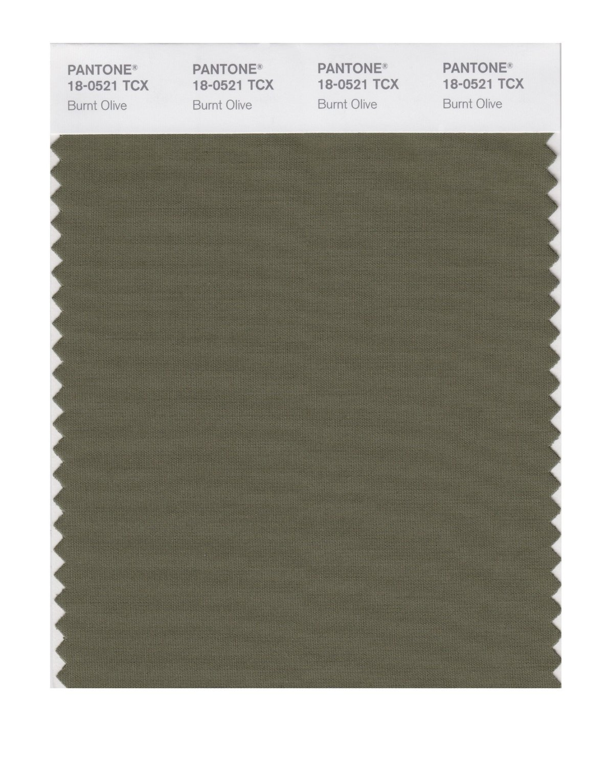Pantone Smart Swatch 18-0521 Burnt Olive