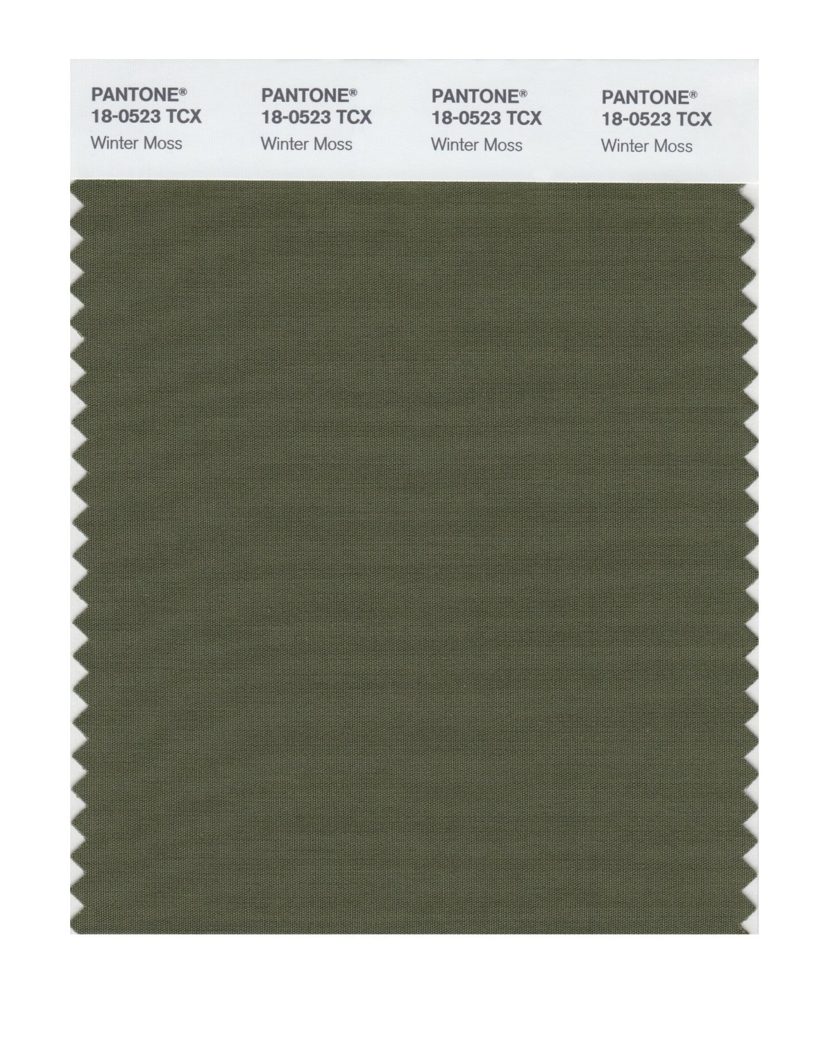 Pantone Smart Swatch 18-0523 Winter Moss