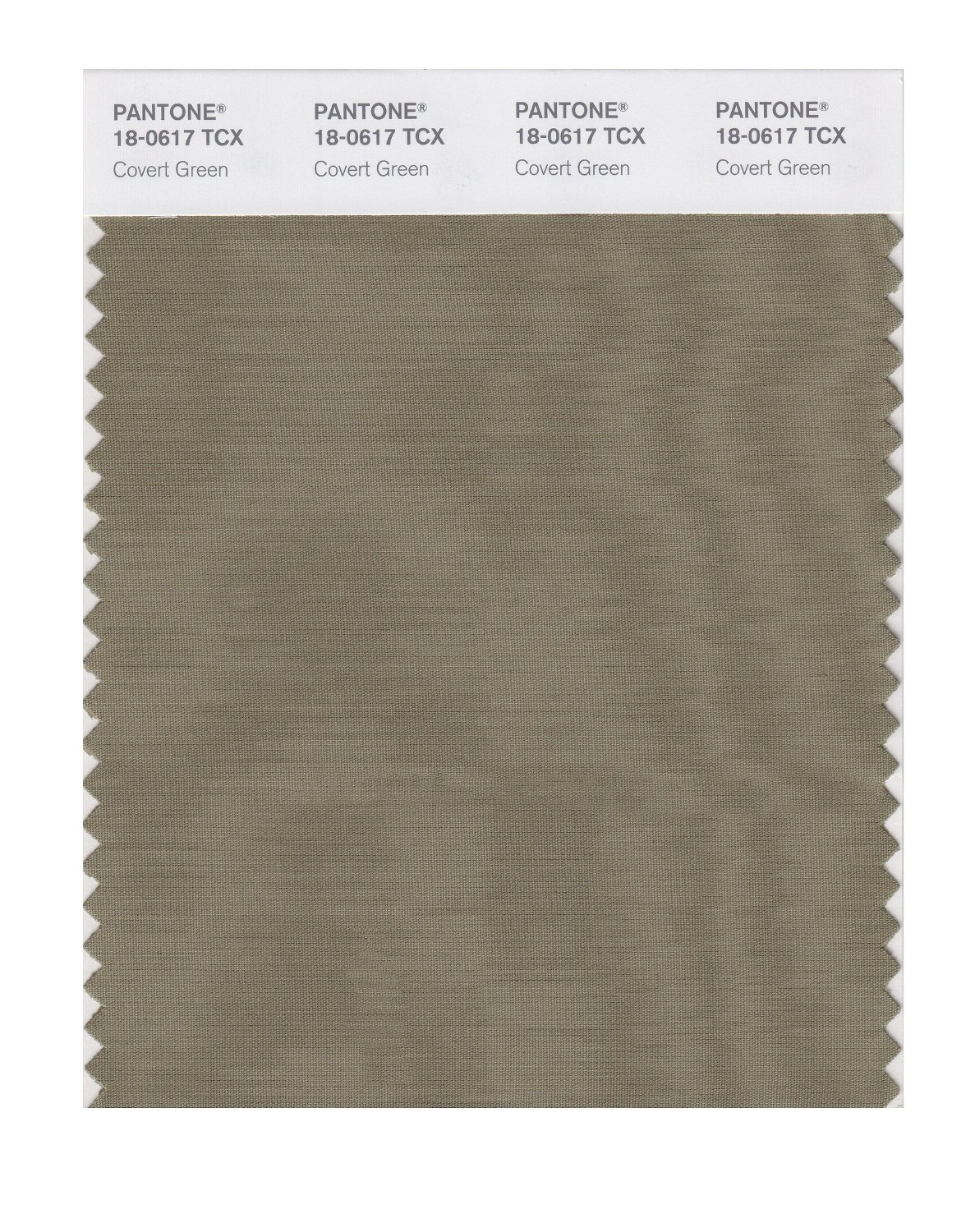Pantone Smart Swatch 18-0617 Covert Green