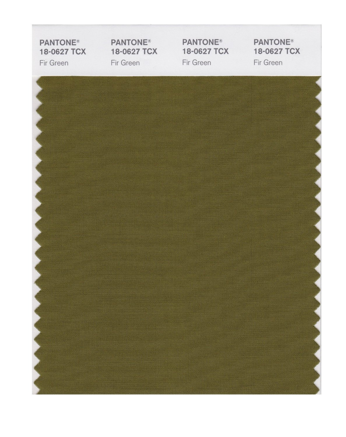 Pantone Smart Swatch 18-0627 Fir Green