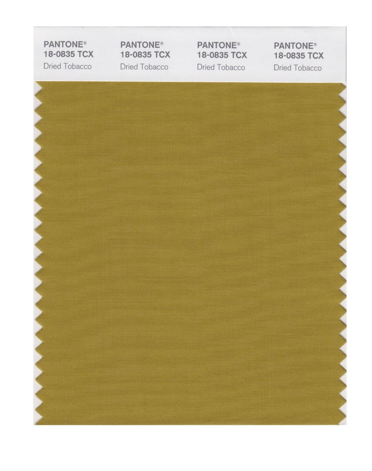 Pantone Smart Swatch 18-0835 Dried Tobacco