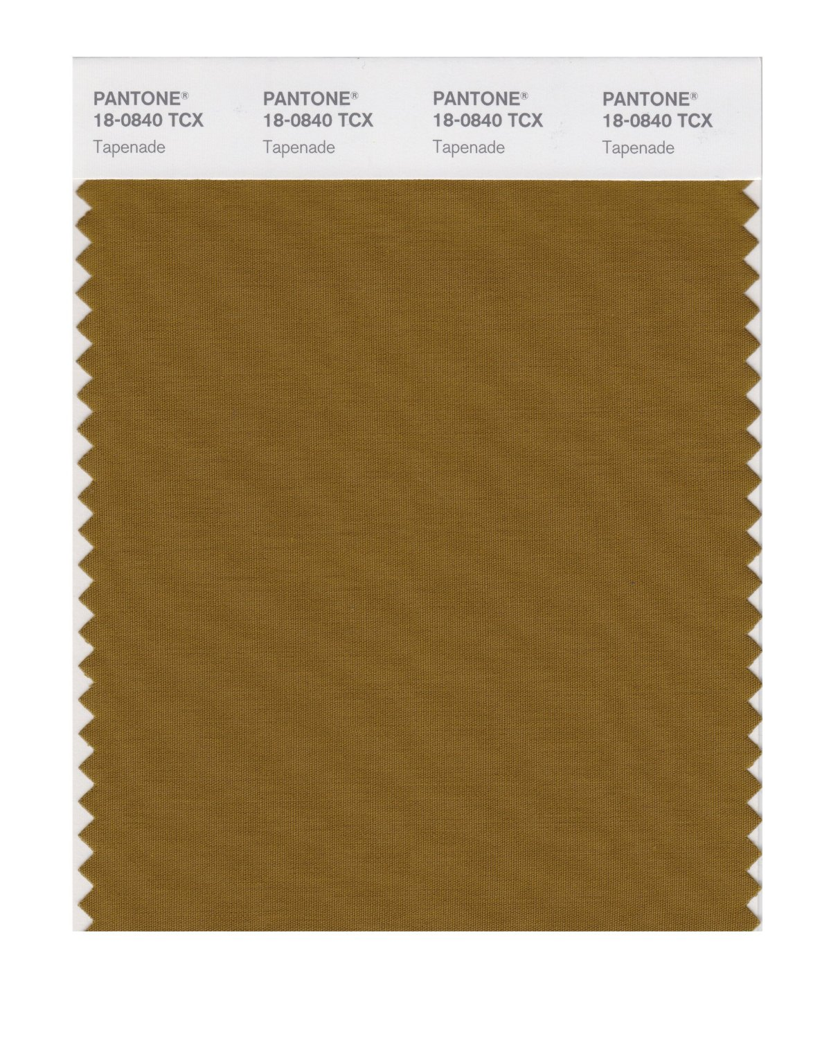 Pantone Smart Swatch 18-0840 Tapenade