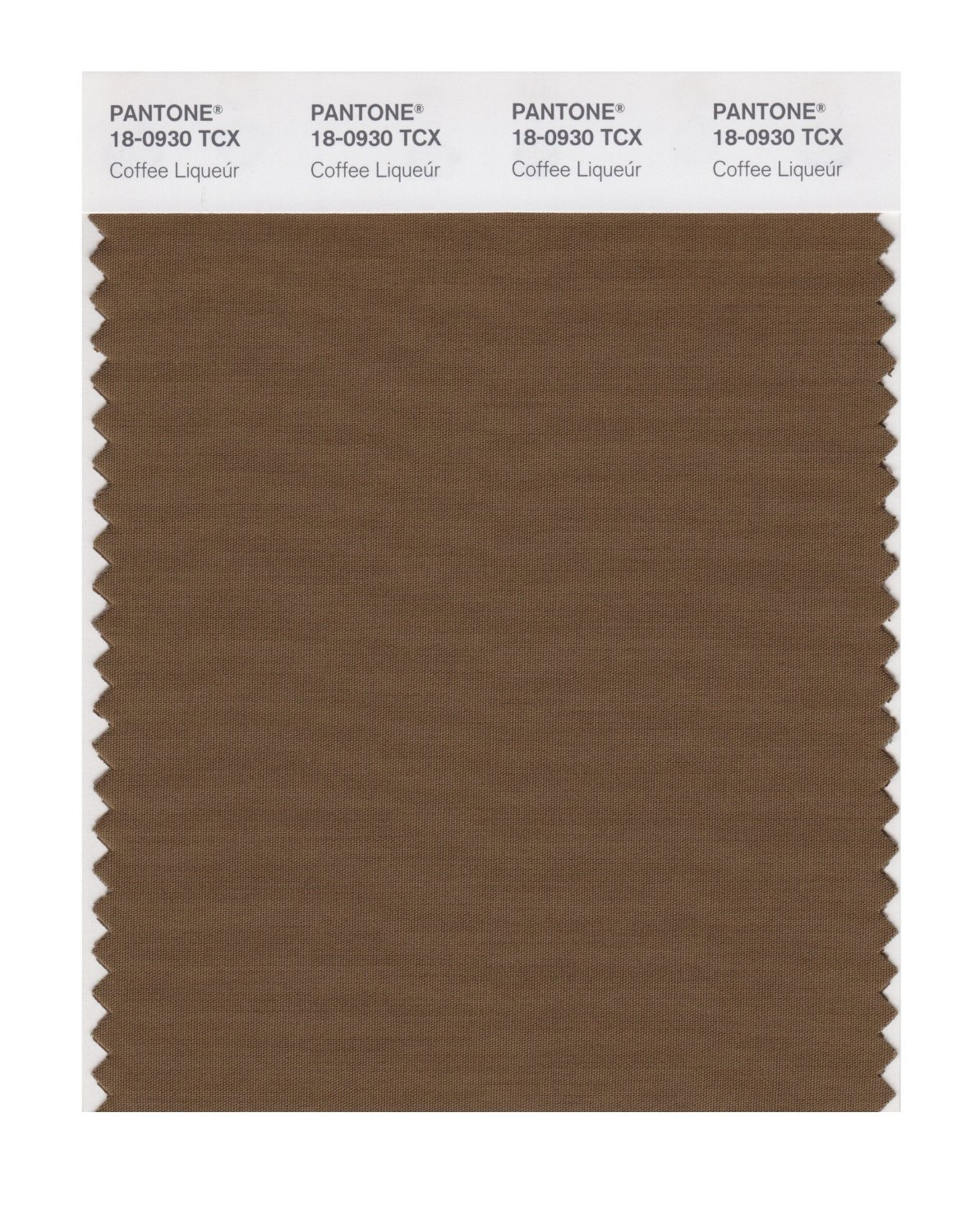 Pantone Smart Swatch 18-0930 Coffee Liqueur