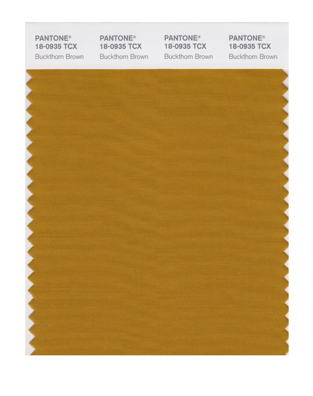 Pantone Smart Swatch 18-0935 Buckthorn Brown