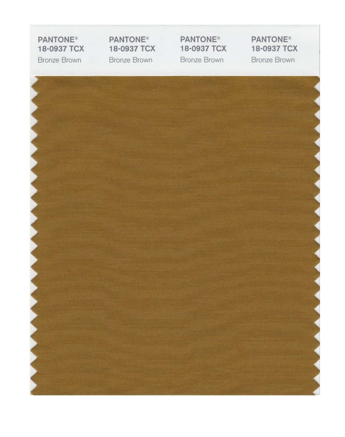 Pantone Smart Swatch 18-0937 Bronze Brown