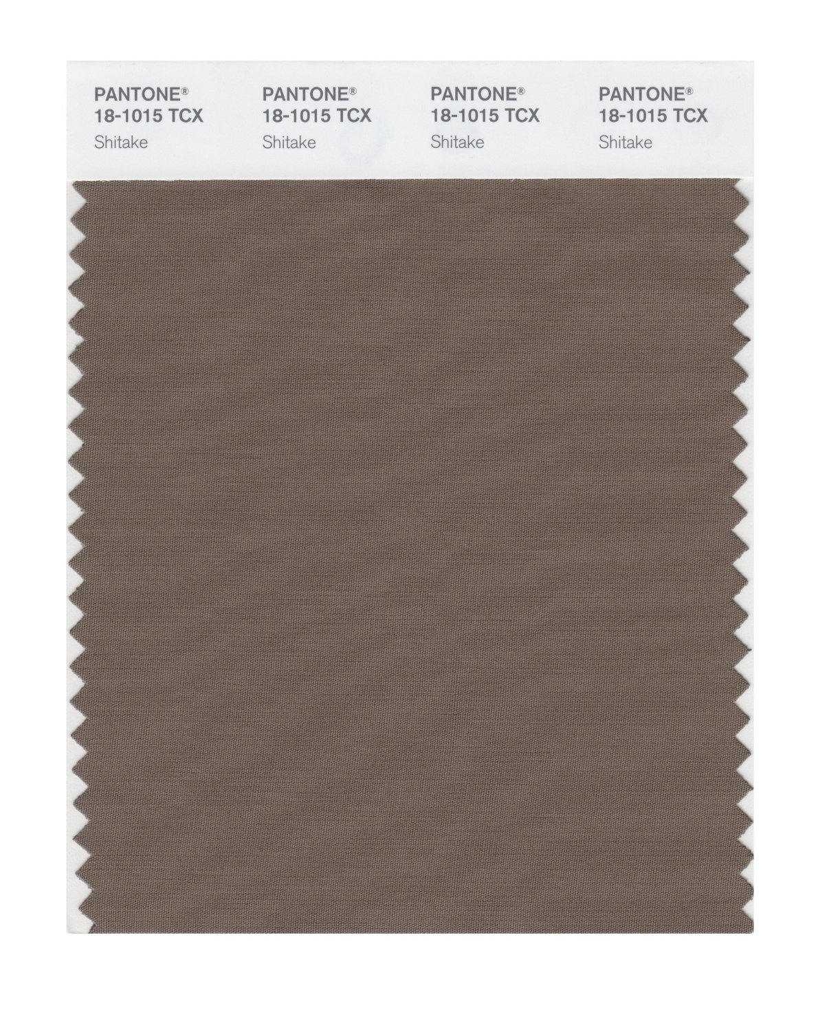 Pantone Smart Swatch 18-1015 Shitake