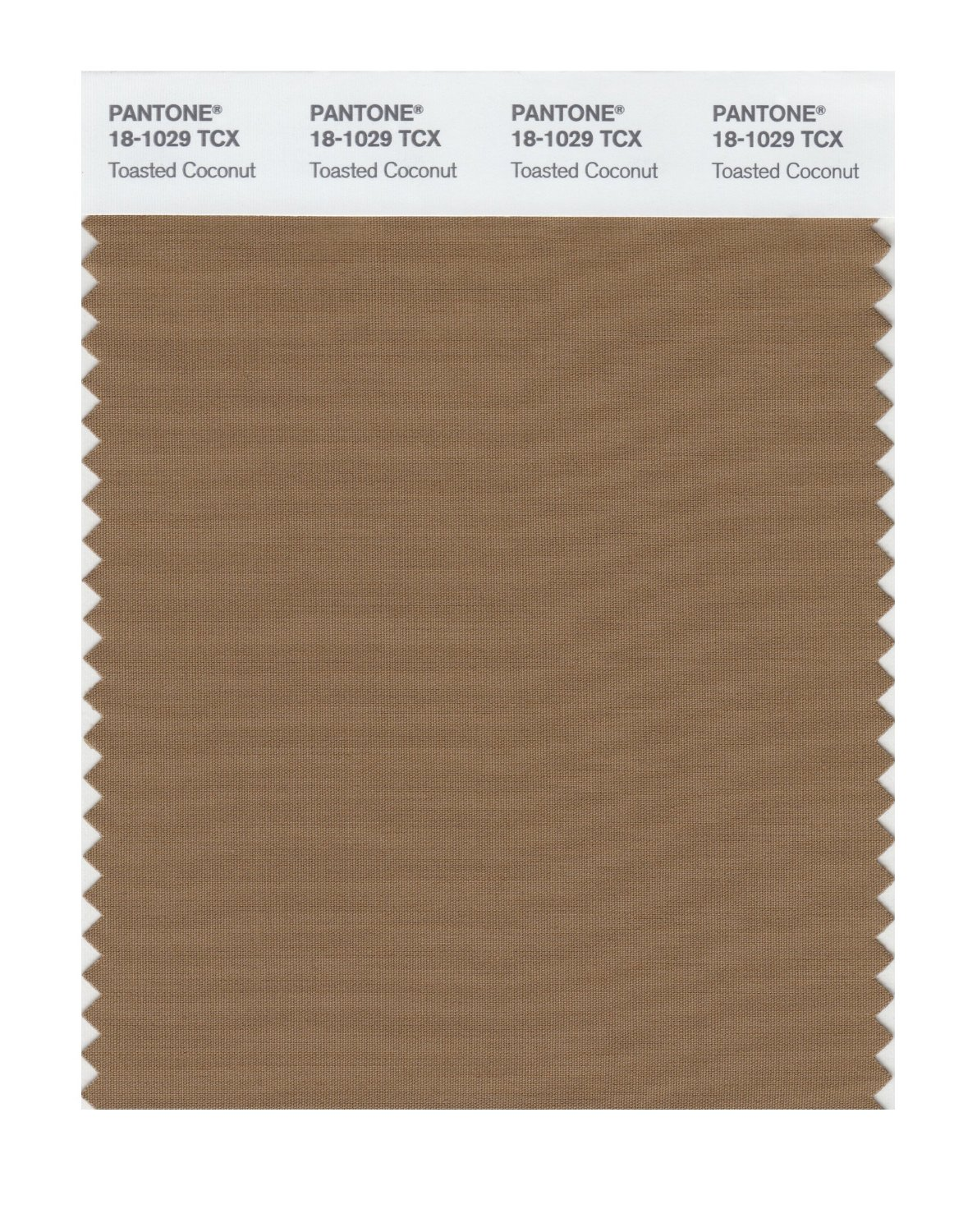 Pantone Smart Swatch 18-1029 Toasted Coconut