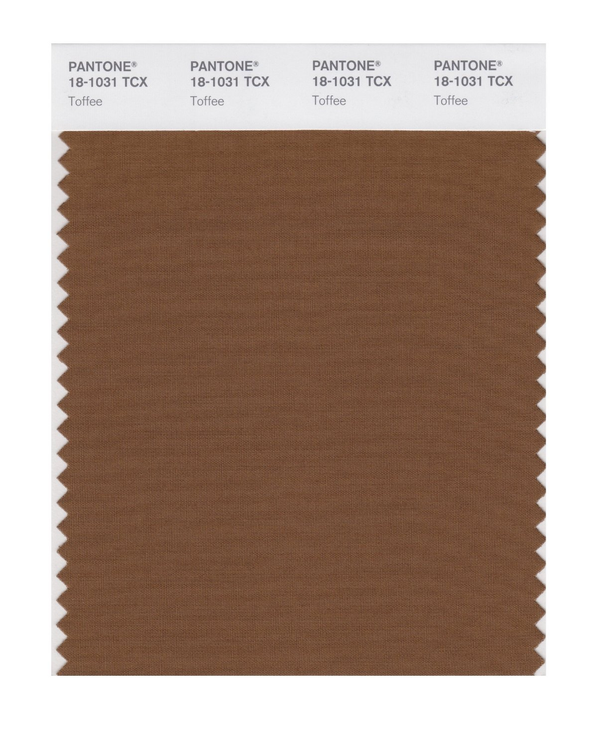 Pantone Smart Swatch 18-1031 Toffee