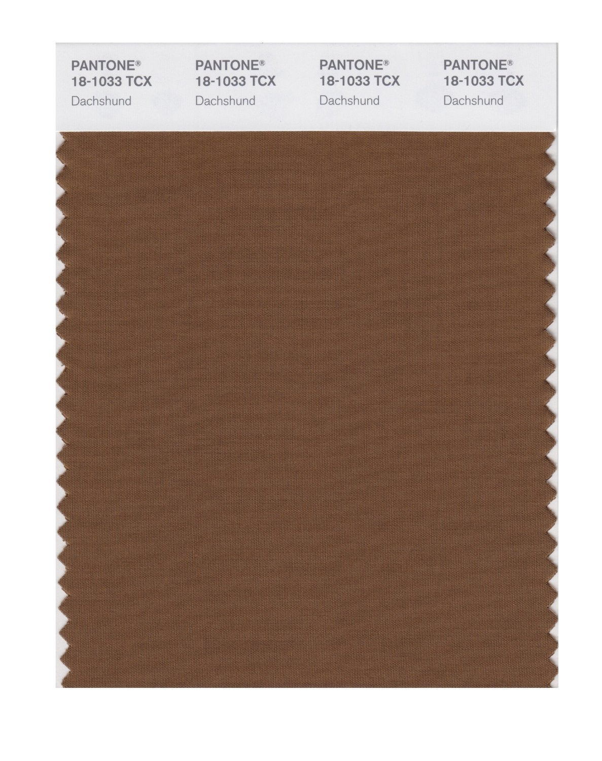 Pantone Smart Swatch 18-1033 Dachshund