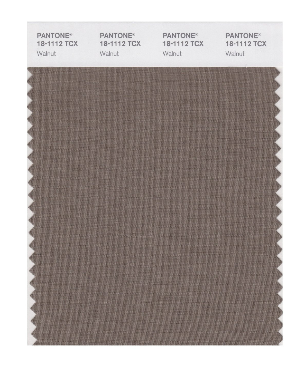 Pantone Smart Swatch 18-1112 Walnut