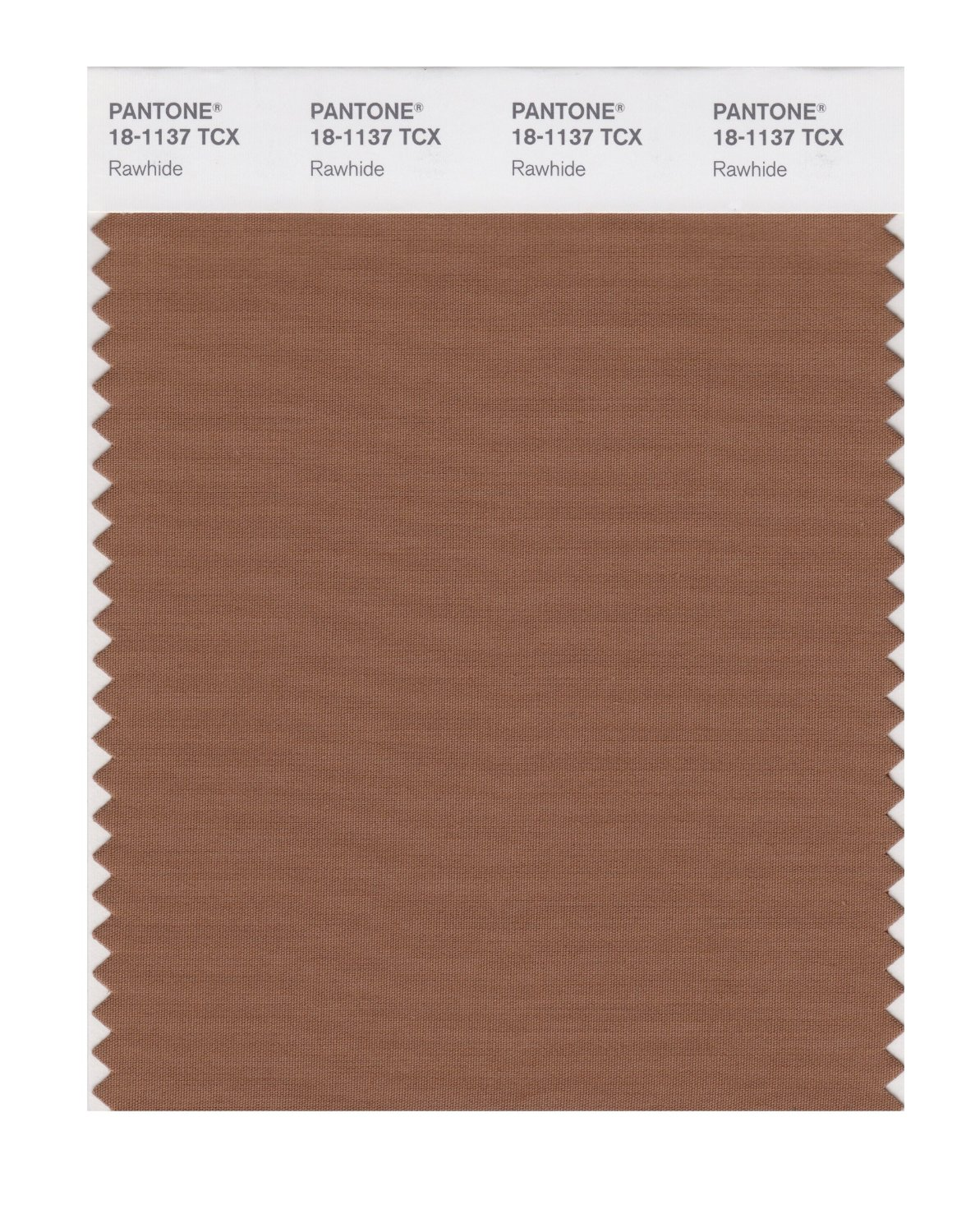 Pantone Smart Swatch 18-1137 Rawhide