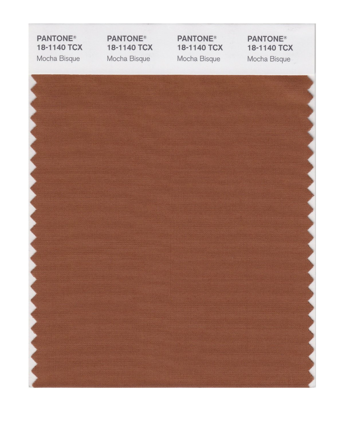 Pantone Smart Swatch 18-1140 Mocha Bisque