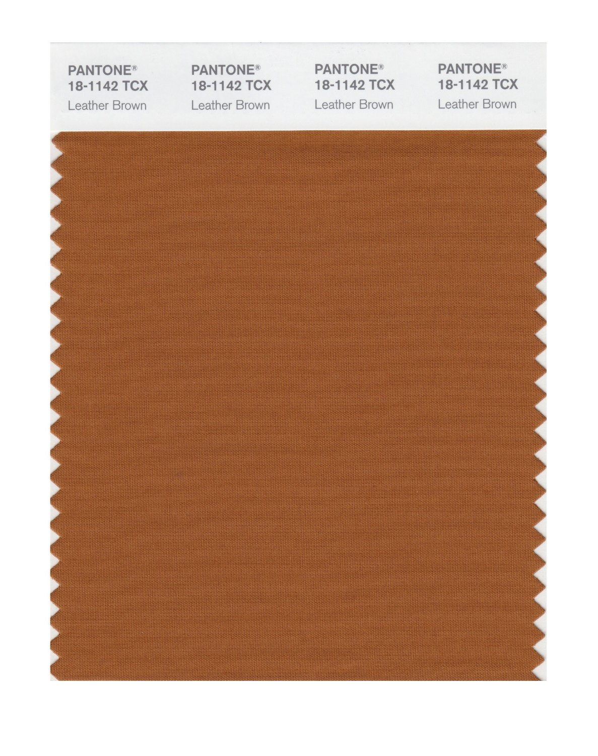 Pantone Smart Swatch 18-1142 Leather Brown