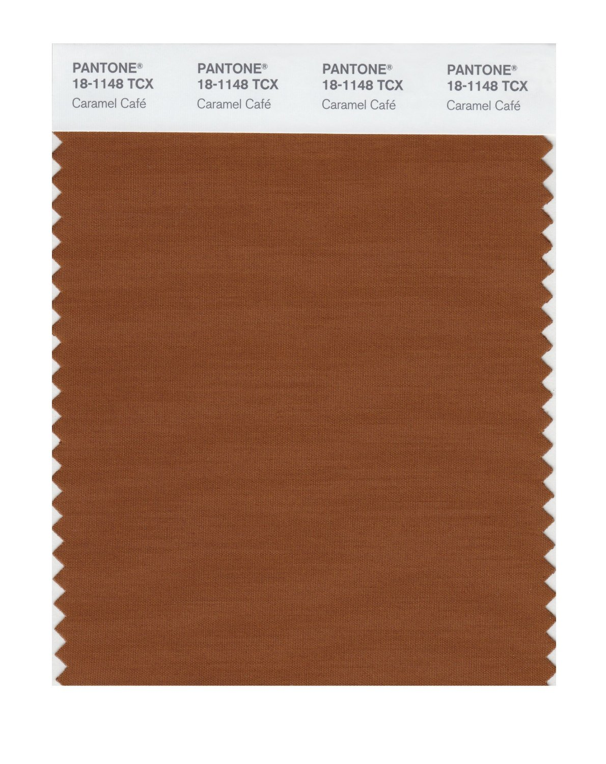 Pantone Smart Swatch 18-1148 Caramel Cafe