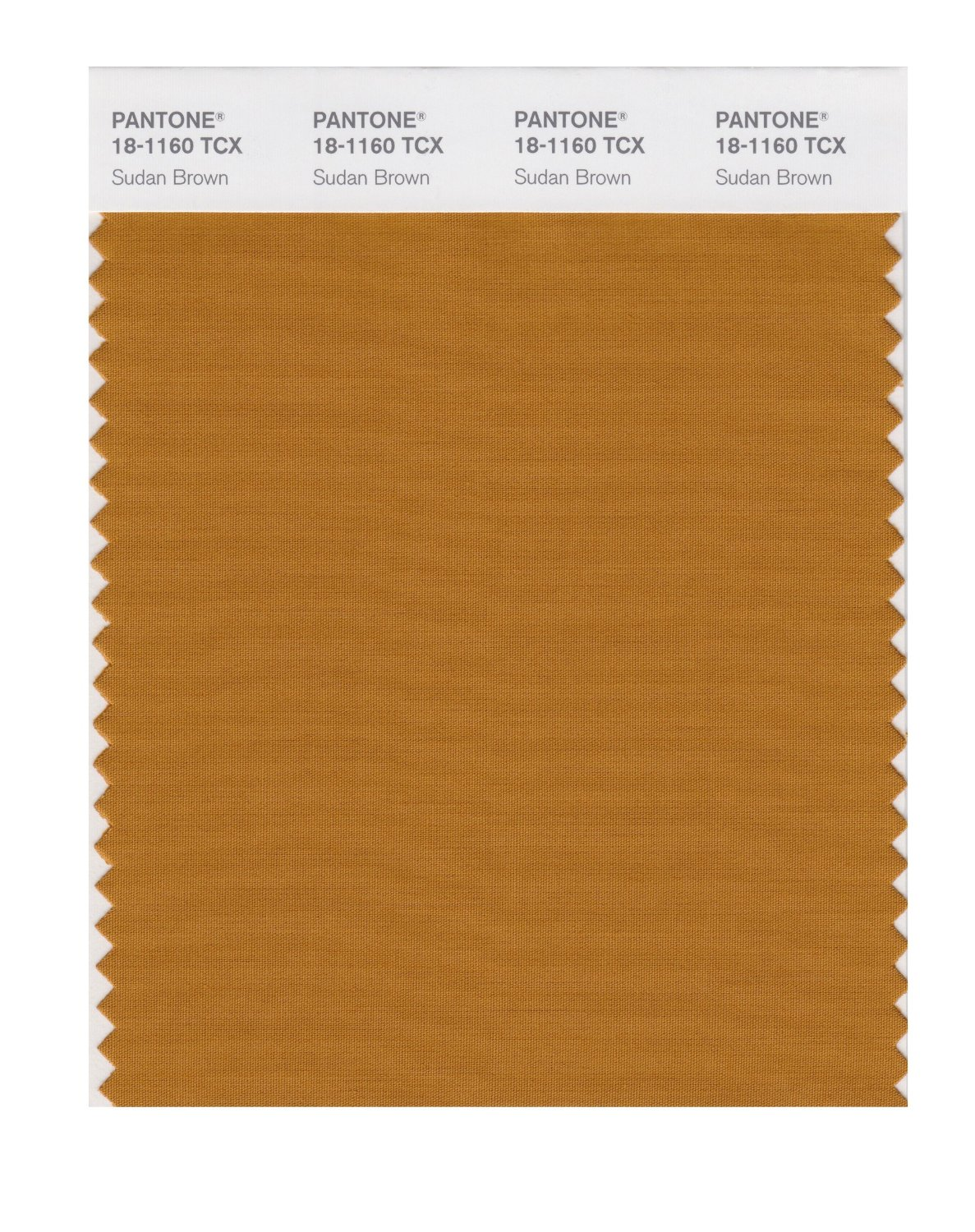 Pantone Smart Swatch 18-1160 Sudan Brown