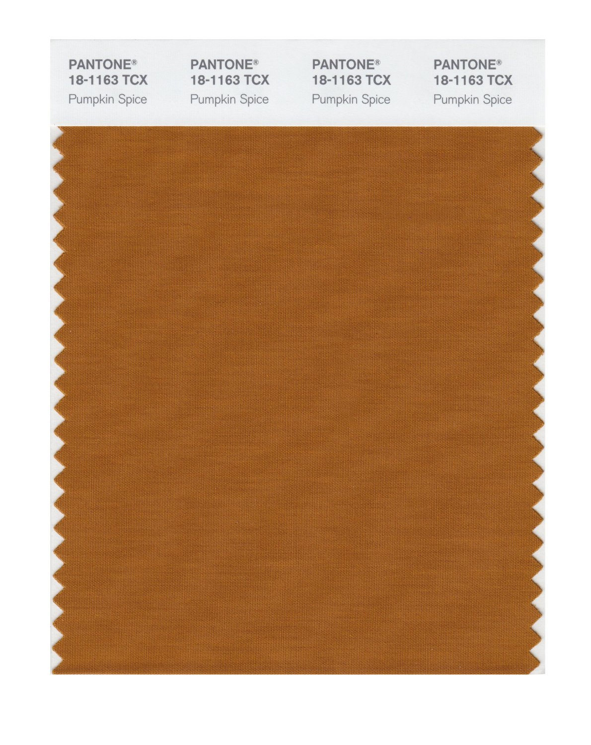 Pantone Smart Swatch 18-1163 Pumpkin Spice