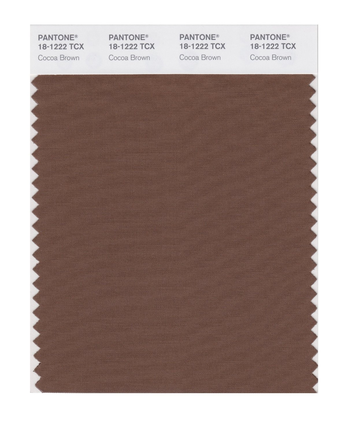 Pantone Smart Swatch 18-1222 Cocoa Brown