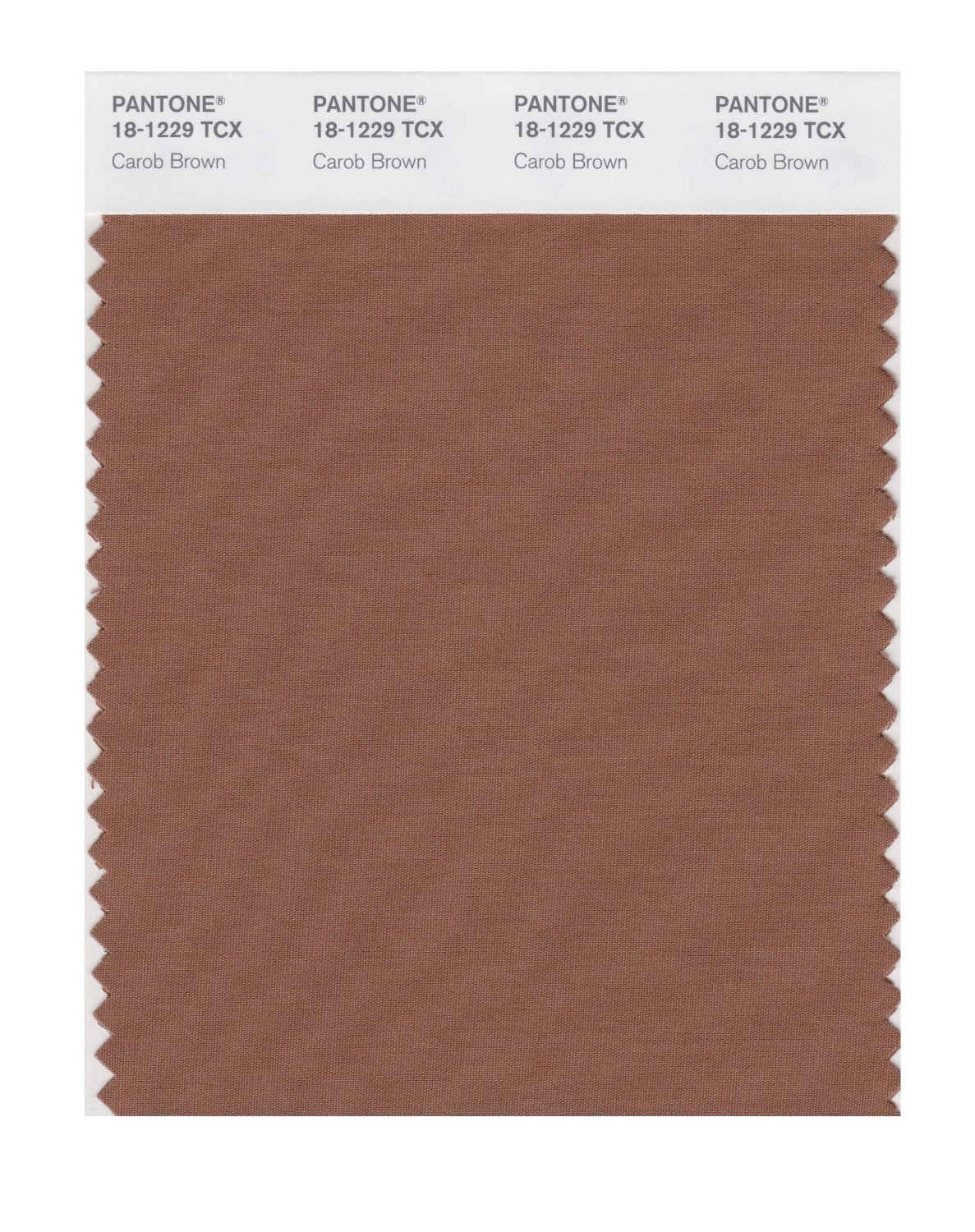 Pantone Smart Swatch 18-1229 Carob Brown