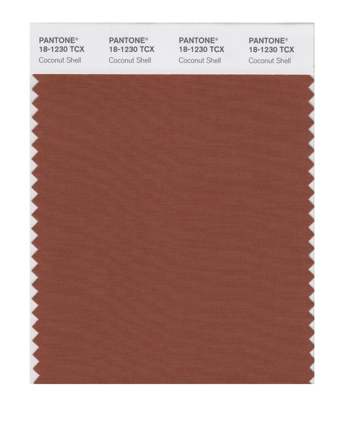 Pantone Smart Swatch 18-1230 Coconut Shell