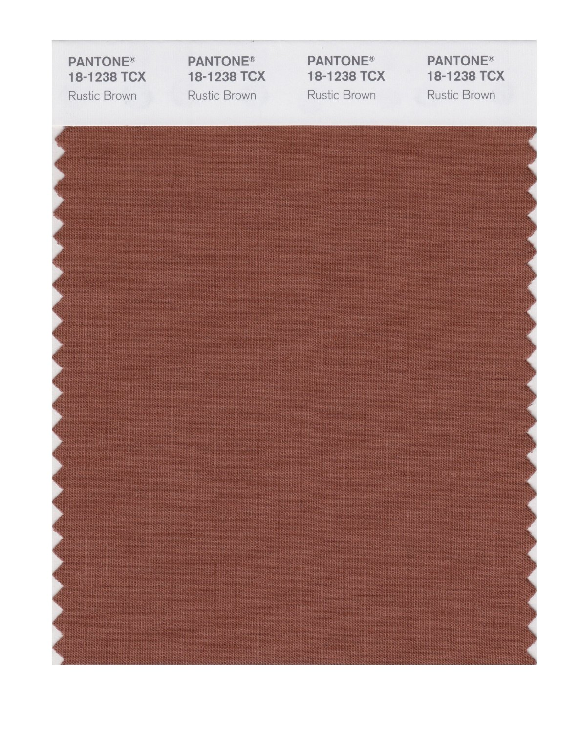 Pantone Smart Swatch 18-1238 Rustic Brown