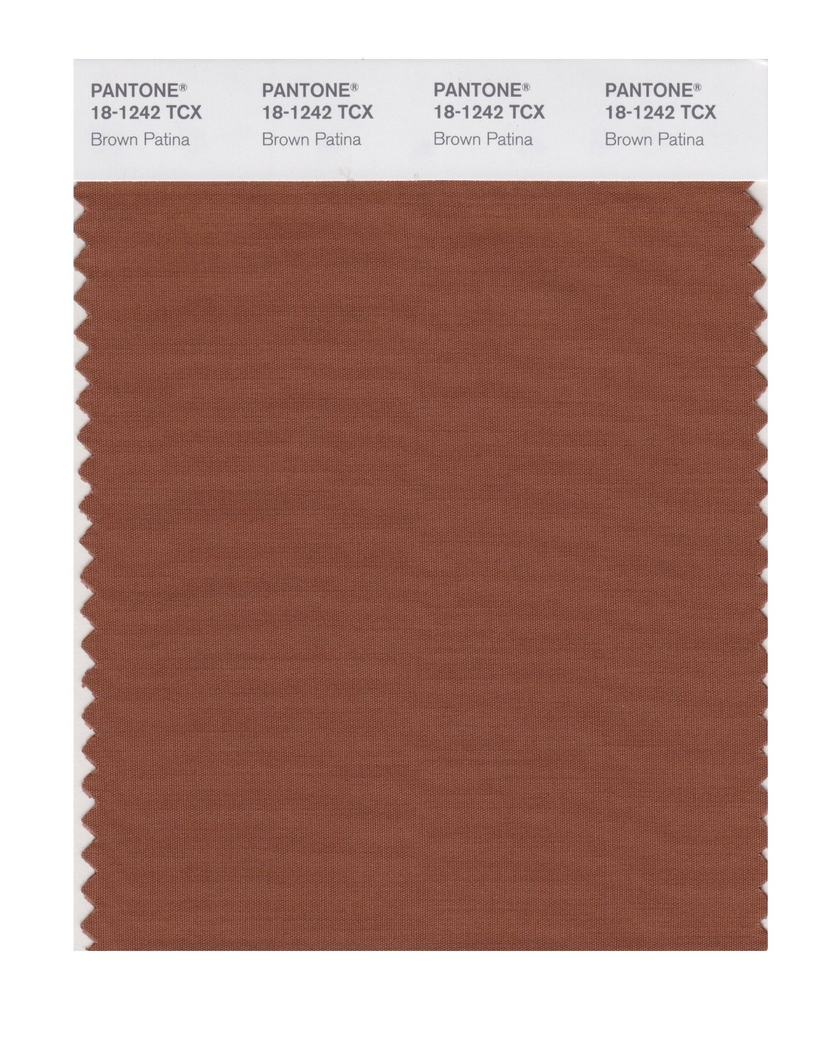 Pantone Smart Swatch 18-1242 Brown Patina