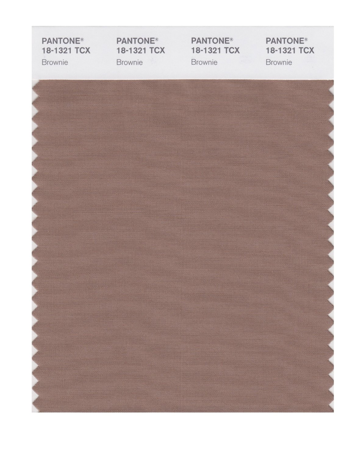 Pantone Smart Swatch 18-1321 Brownie