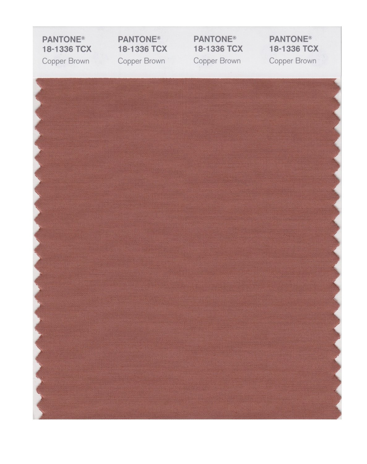 Pantone Smart Swatch 18-1336 Copper Brown