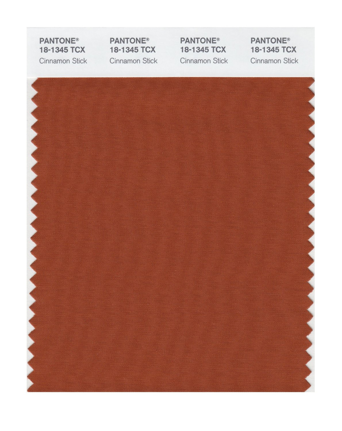 Pantone Smart Swatch 18-1345 Cinnamon Stick