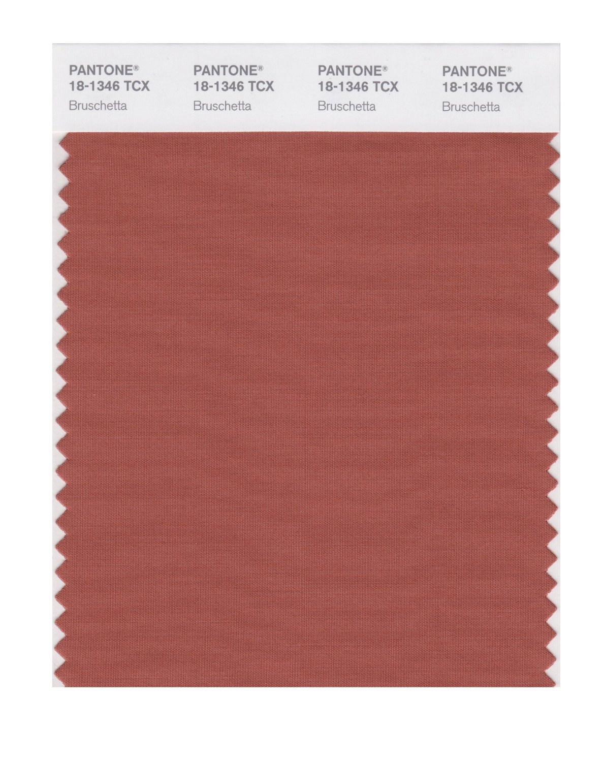 Pantone Smart Swatch 18-1346 Bruschetta