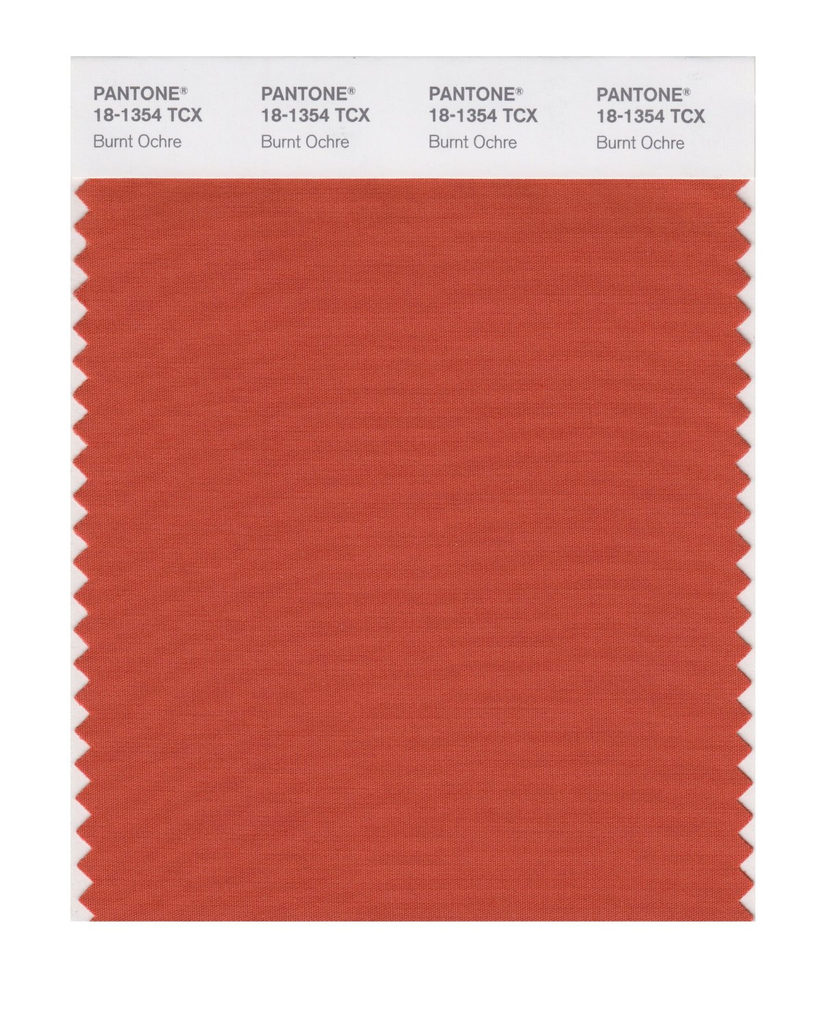 Pantone Smart Swatch 18-1354 Burnt Ochre