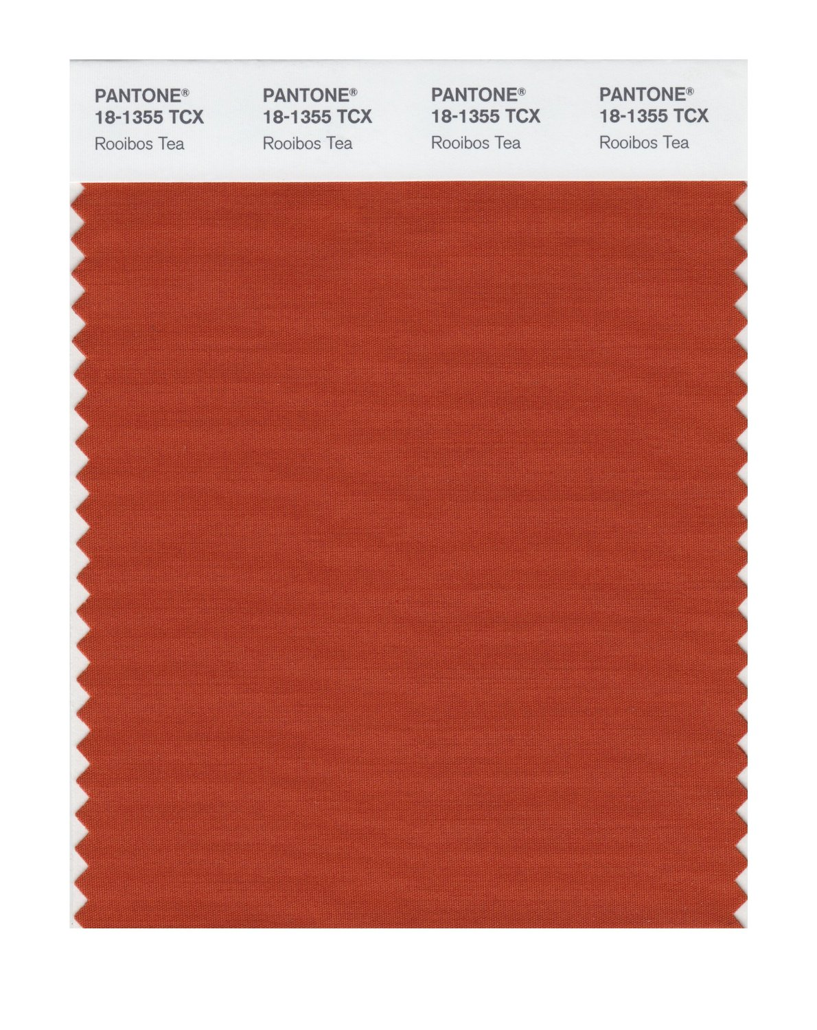 Pantone Smart Swatch 18-1355 Rooibos Tea
