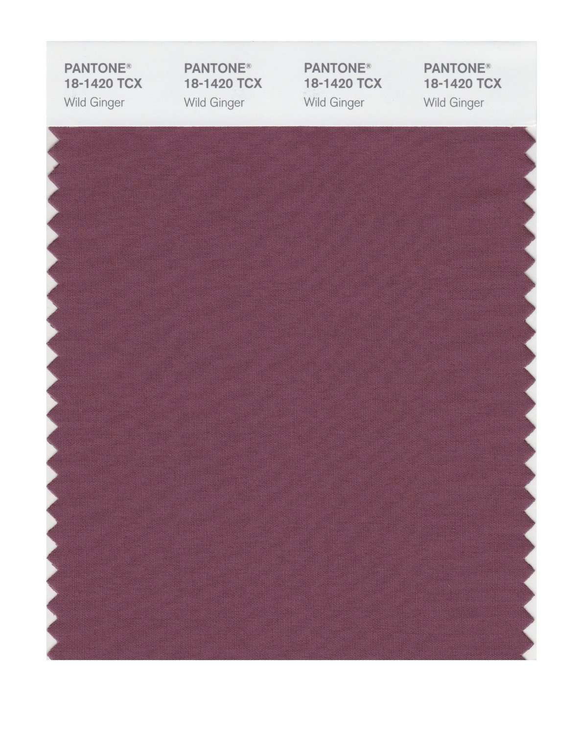 Pantone Smart Swatch 18-1420 Wild Ginger