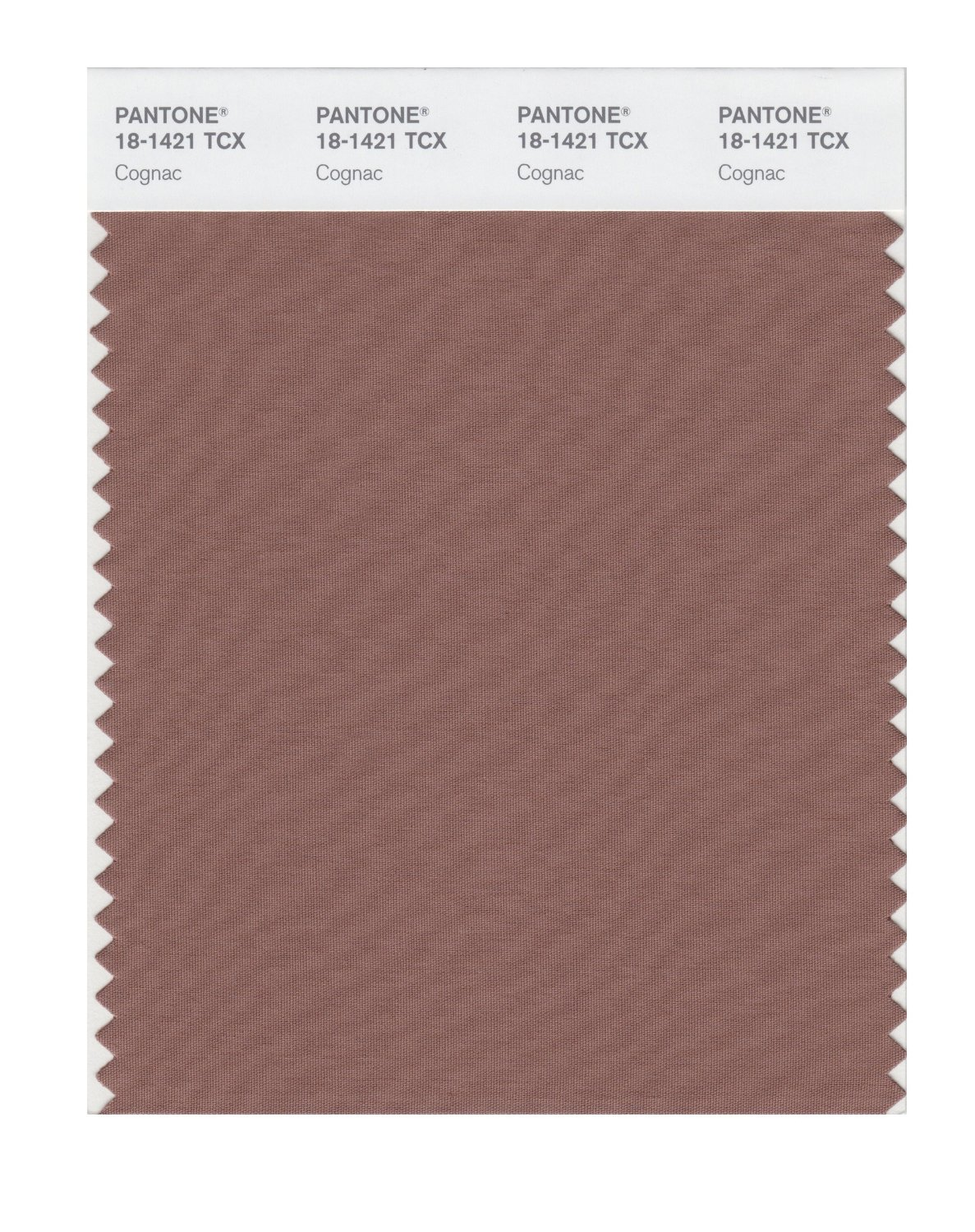 Pantone Smart Swatch 18-1421 Cognac