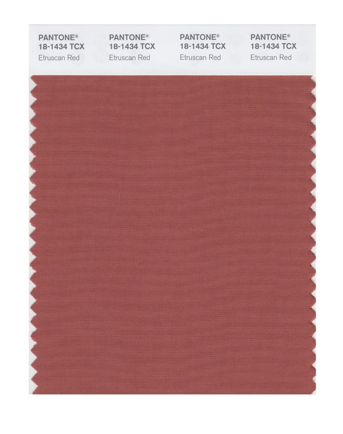 Pantone Smart Swatch 18-1434 Etruscan Red