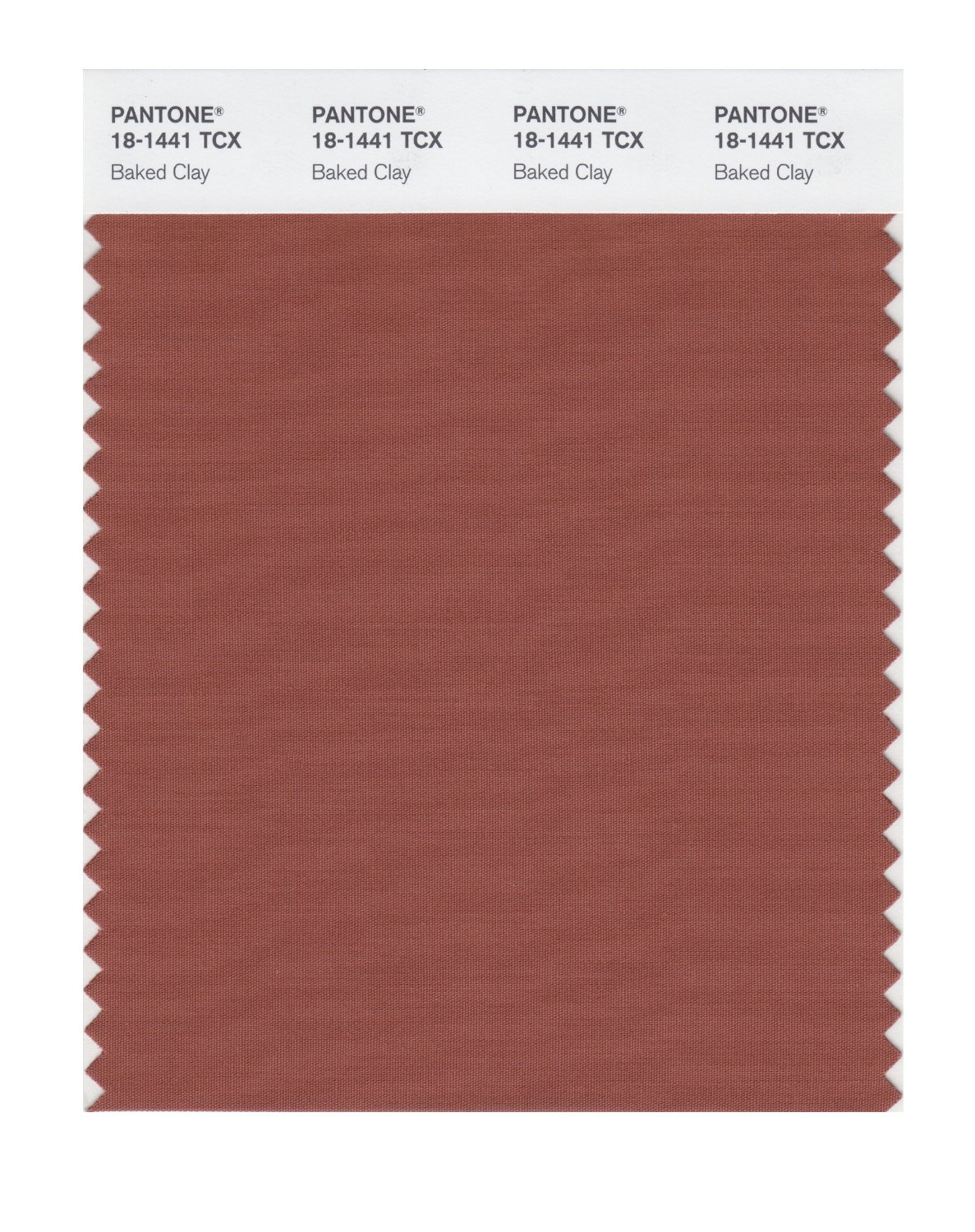 Pantone Smart Swatch 18-1441 Baked Clay