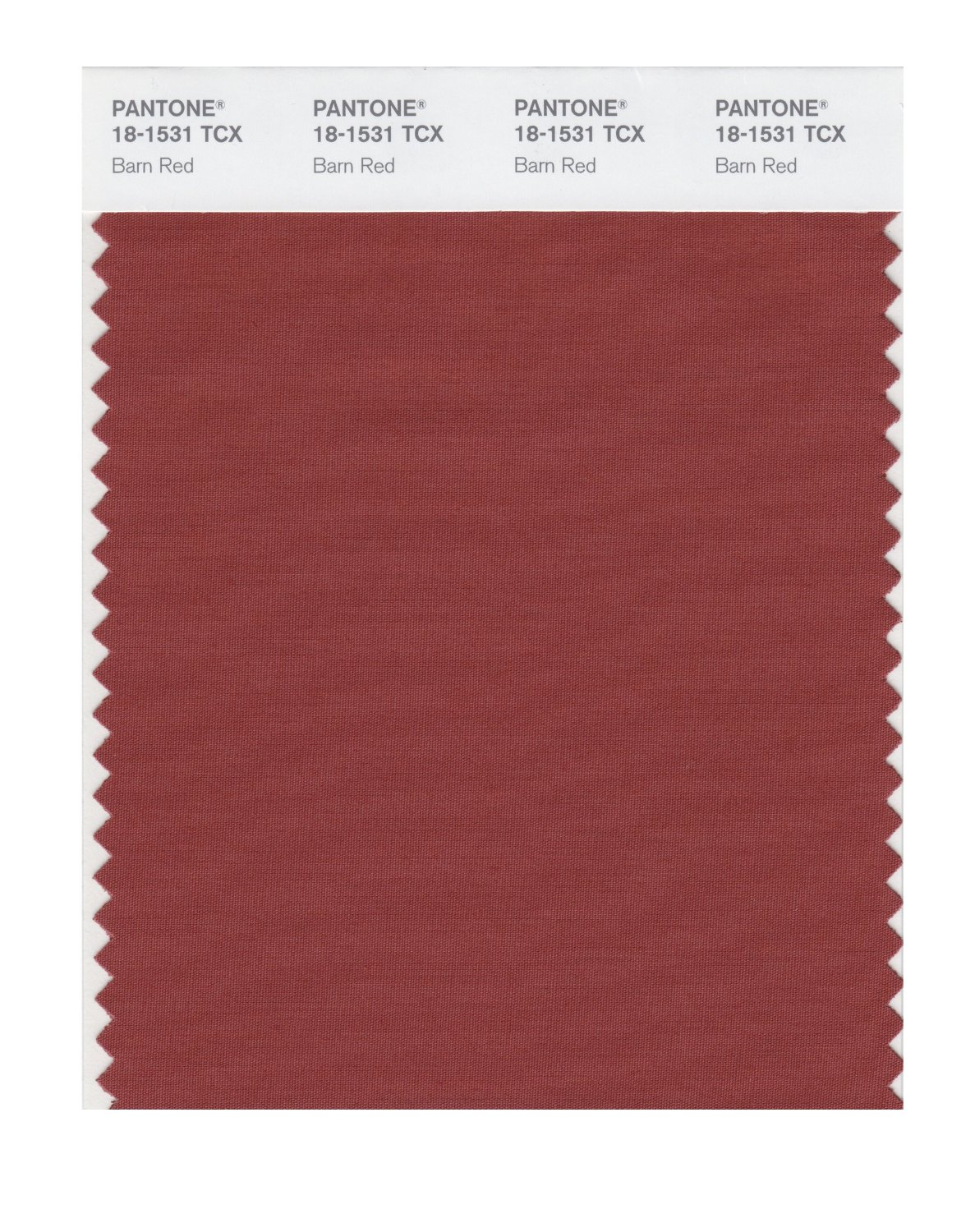 Pantone Smart Swatch 18-1531 Barn Red
