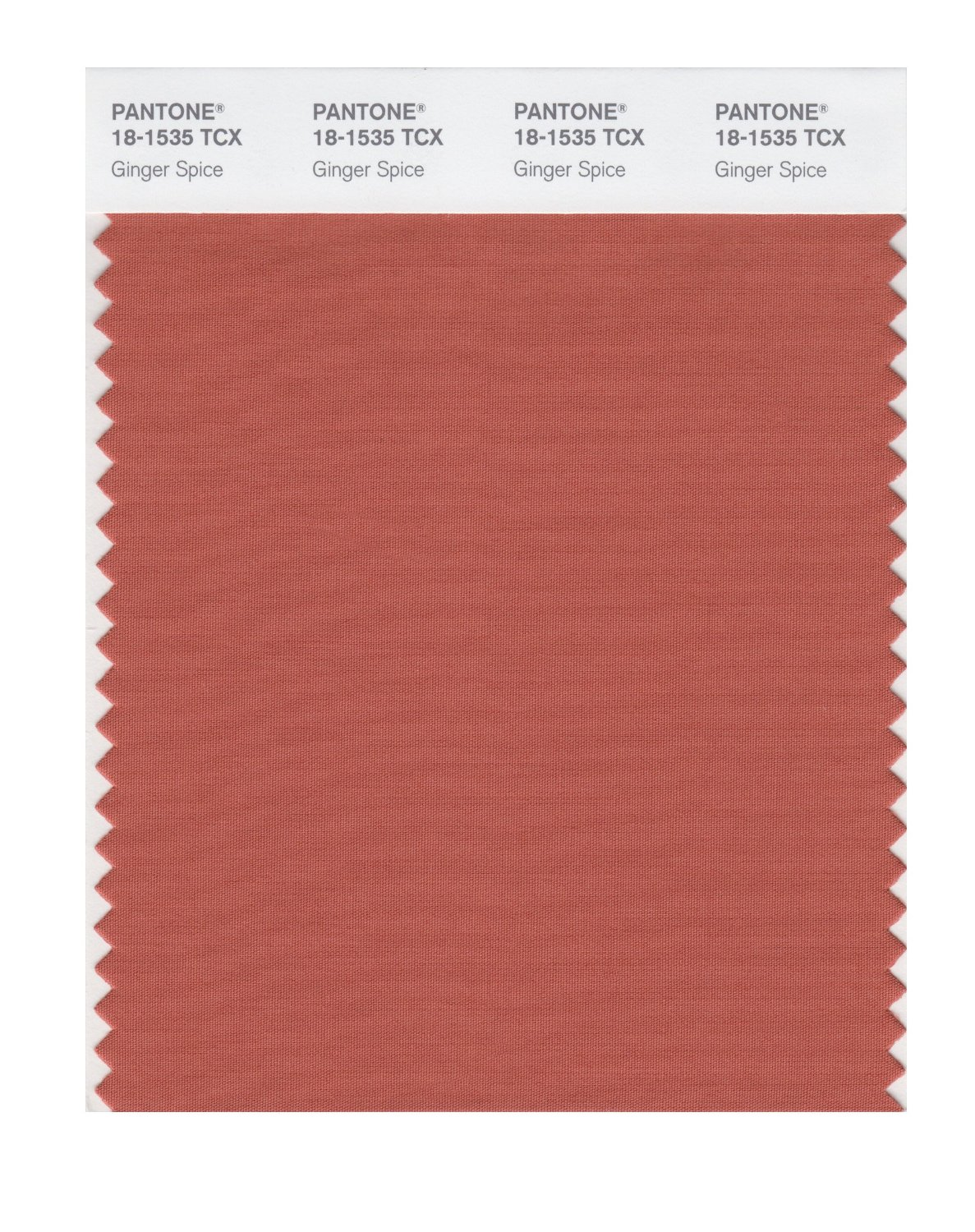 Pantone Smart Swatch 18-1535 Ginger Spice