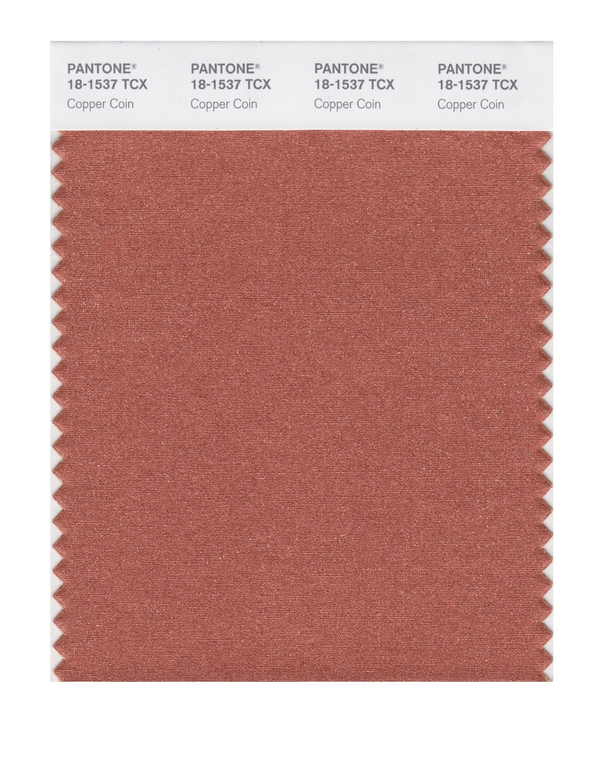 Pantone Smart Swatch 18-1537 Copper Coin