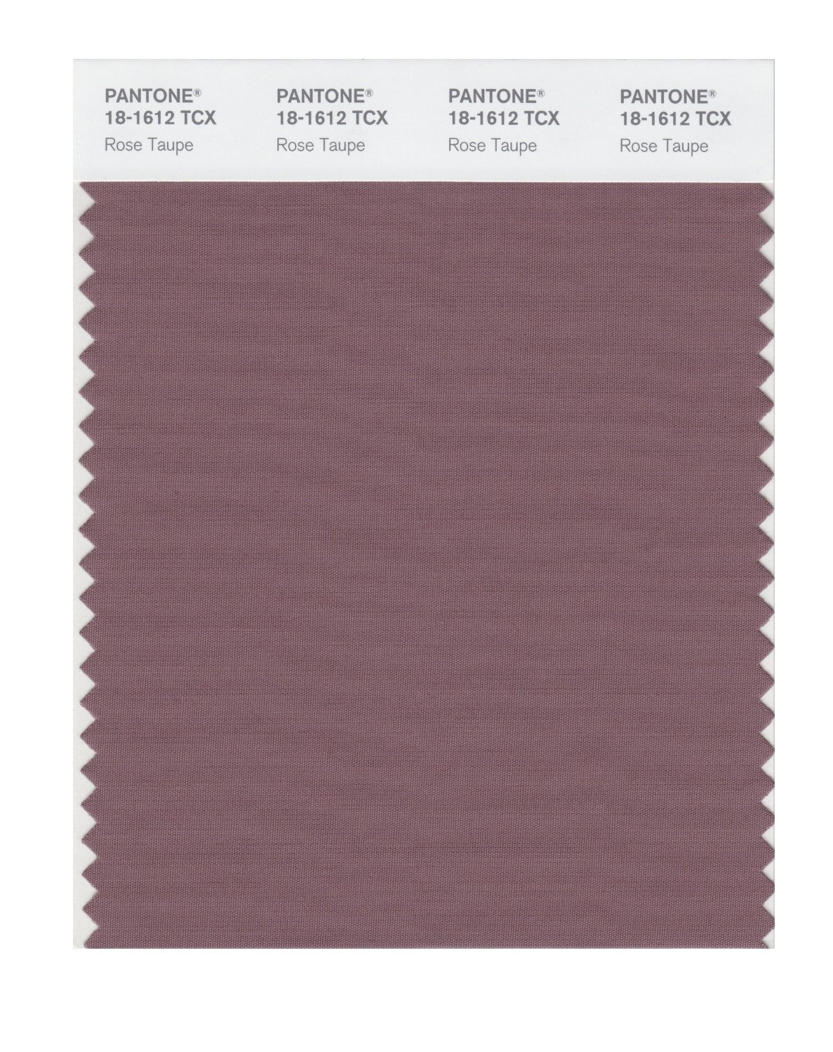 Pantone Smart Swatch 18-1612 Rose Taupe