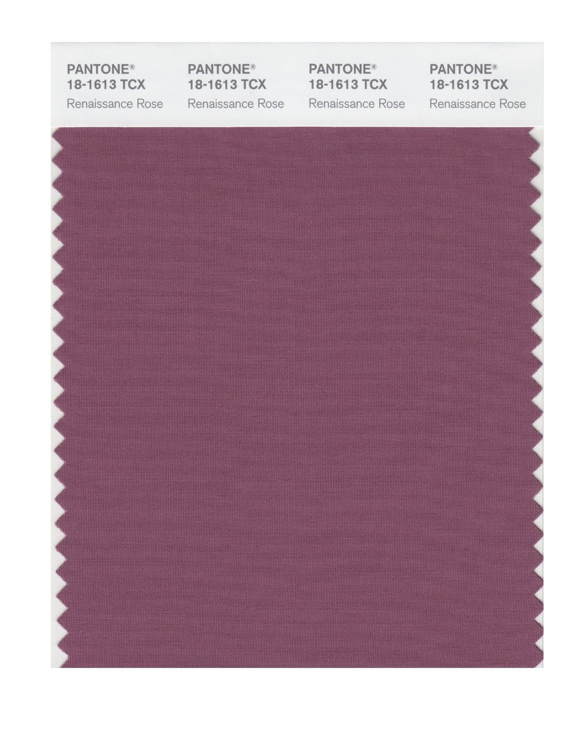 Pantone Smart Swatch 18-1613 Renaissance Rose