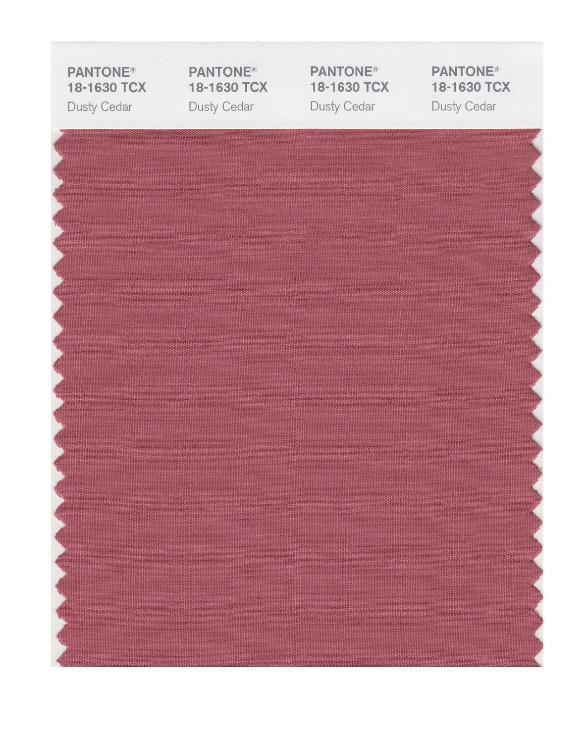 Pantone Smart Swatch 18-1630 Dusty Cedar