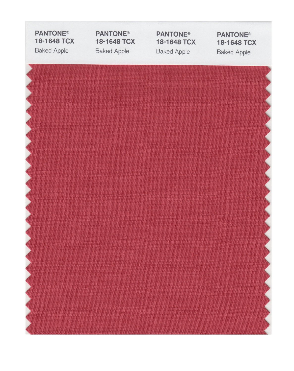 Pantone Smart Swatch 18-1648 Baked Apple