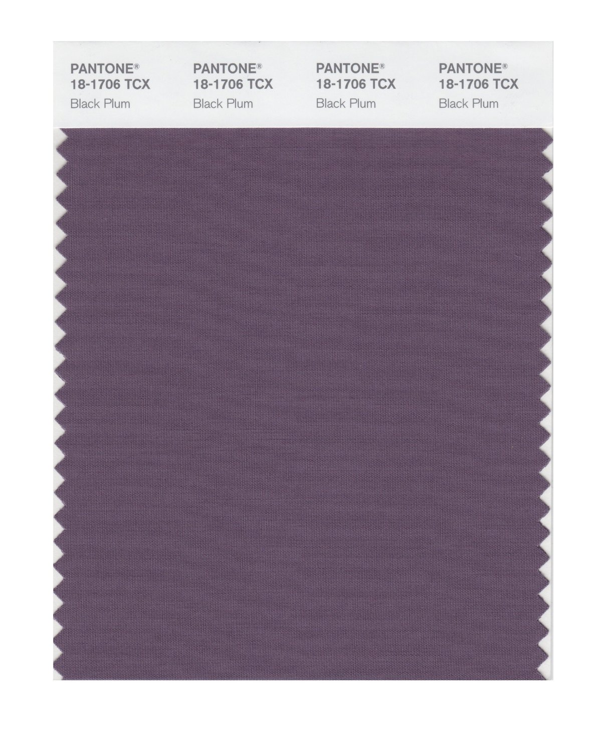 Pantone Smart Swatch 18-1706 Black Plum