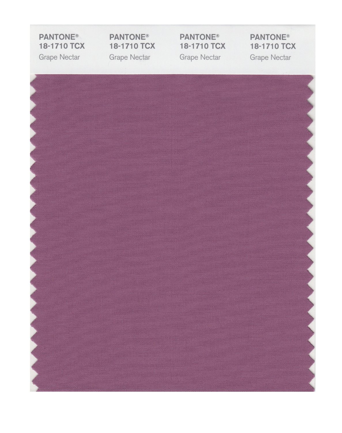 Pantone Smart Swatch 18-1710 Grape Nectar