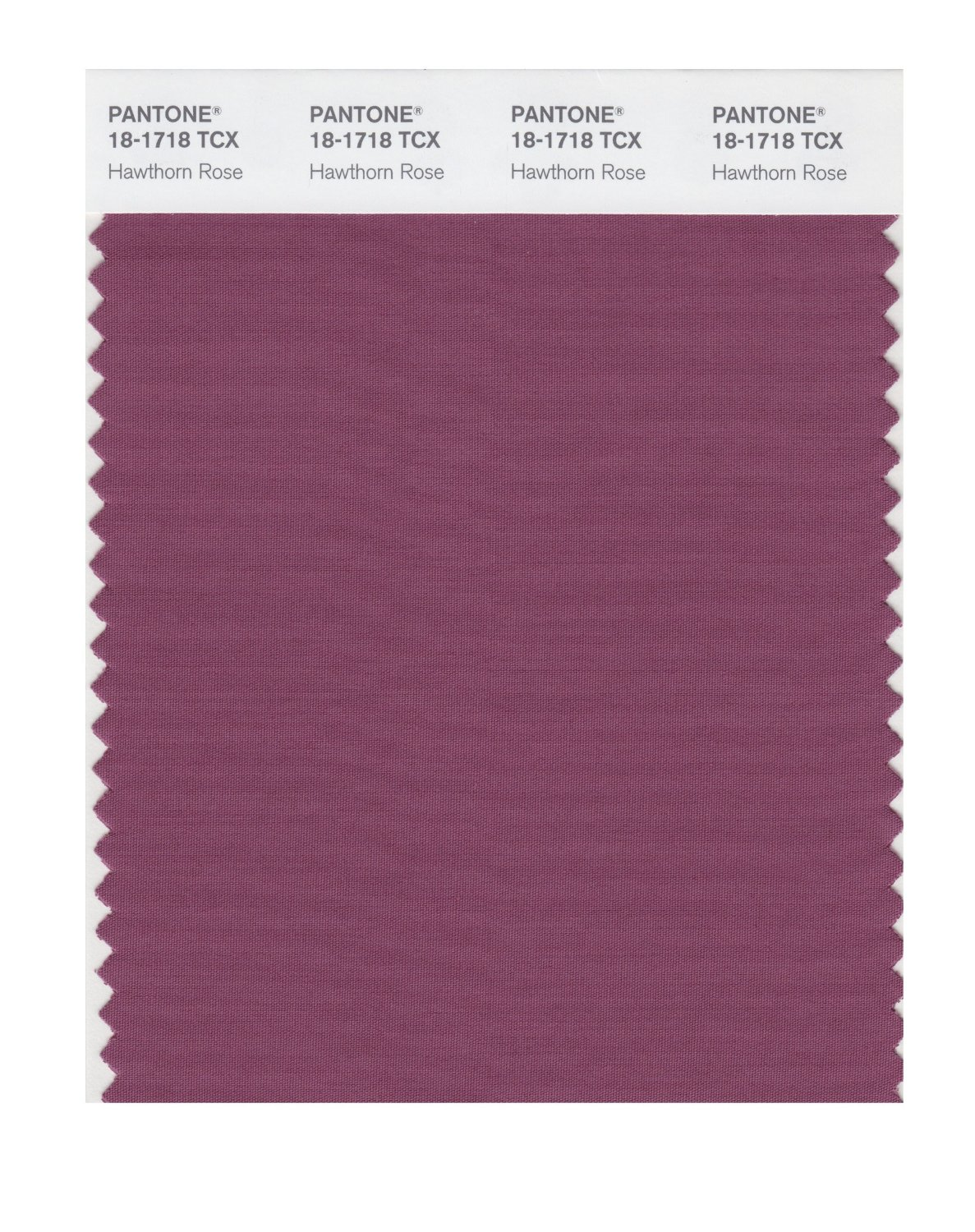 Pantone Smart Swatch 18-1718 Hawthorn Rose