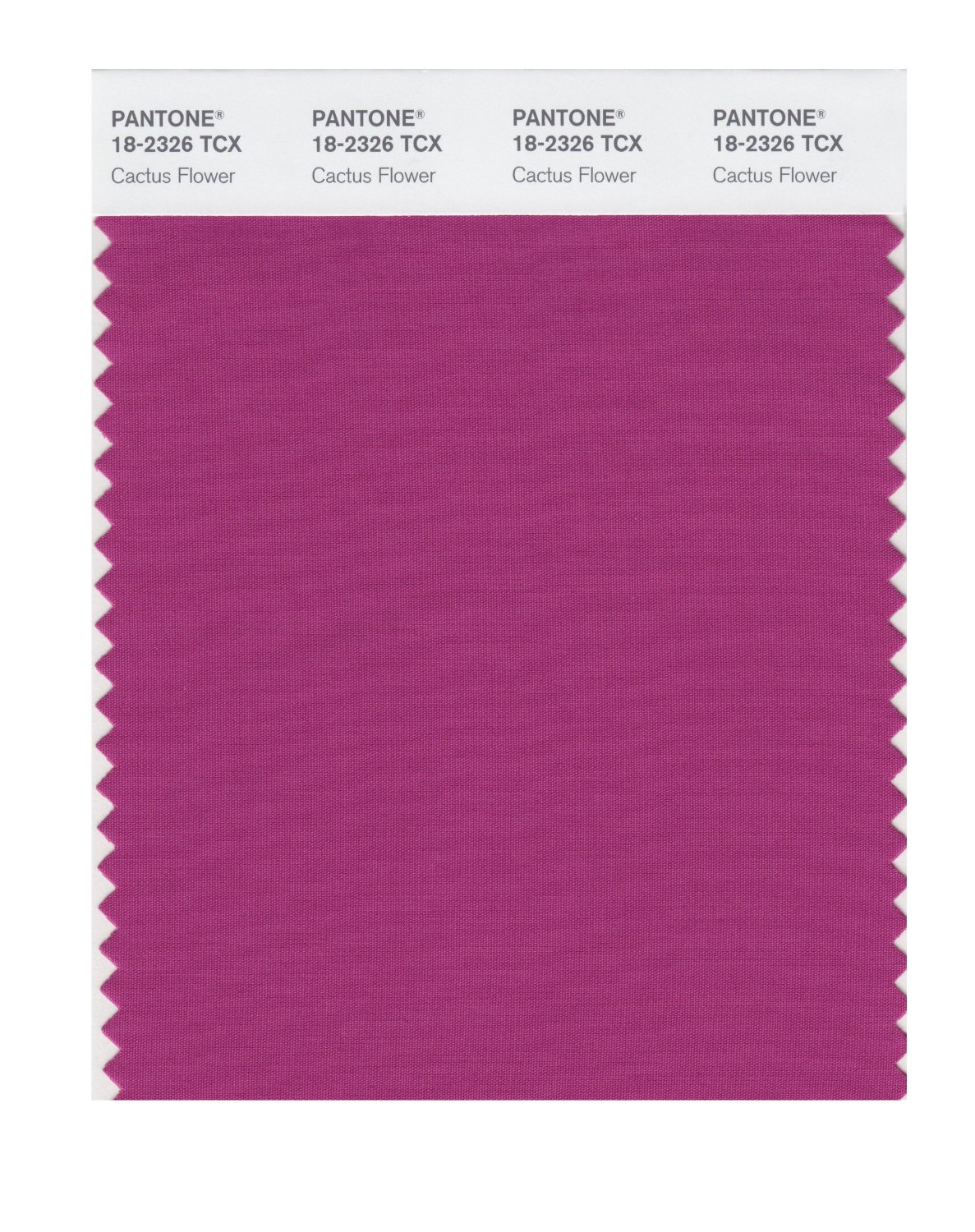 Pantone Smart Swatch 18-2326 Cactus Flower