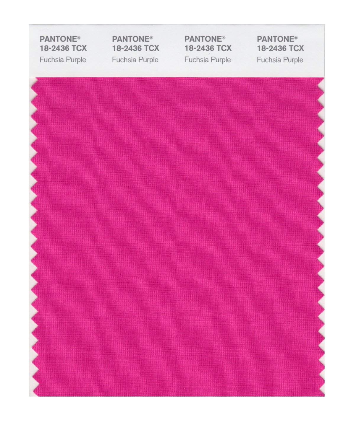 Pantone Smart Swatch 18-2436 Fuschia Purple