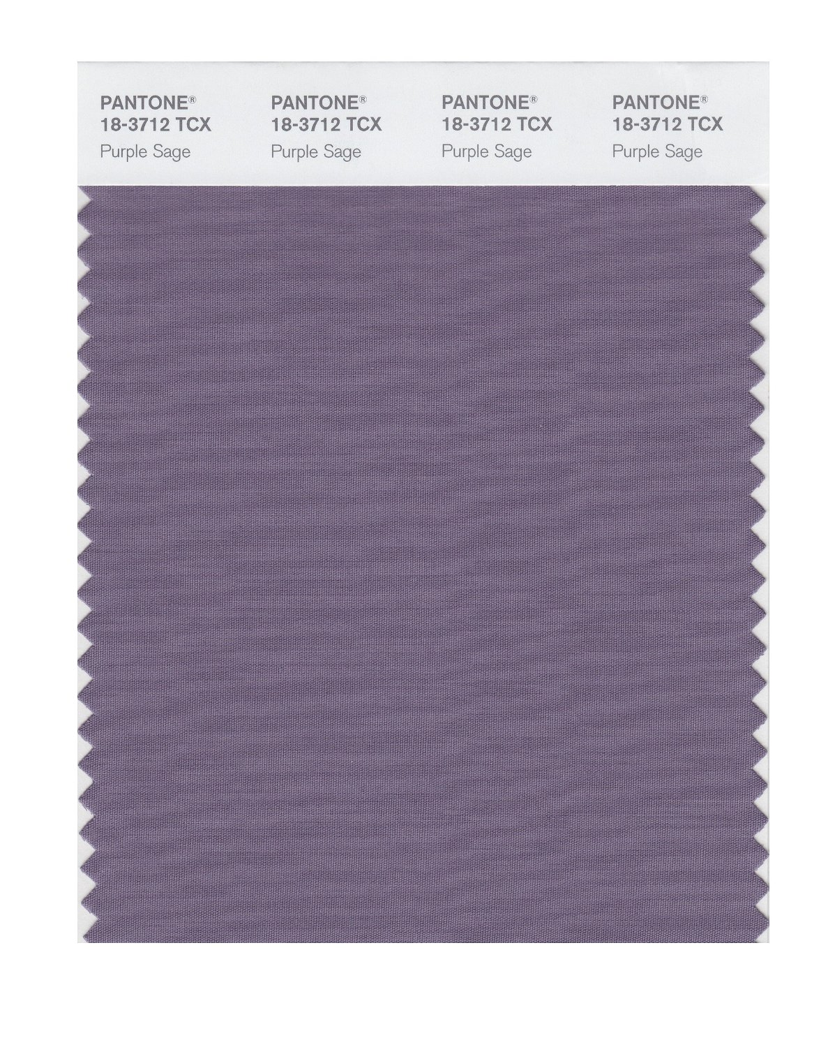Pantone Smart Swatch 18-3712 Purple Sage