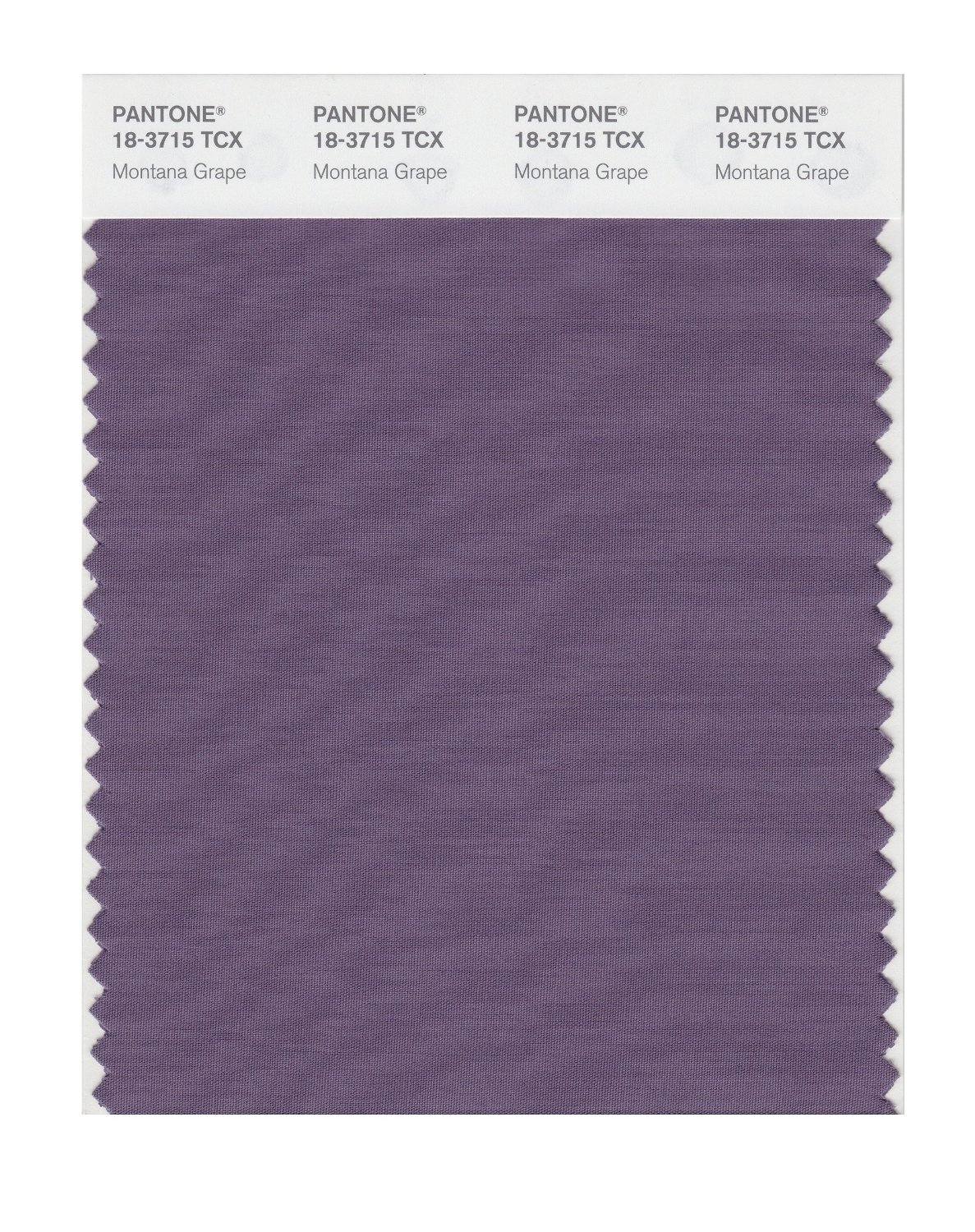 Pantone Smart Swatch 18-3715 Montana Grape
