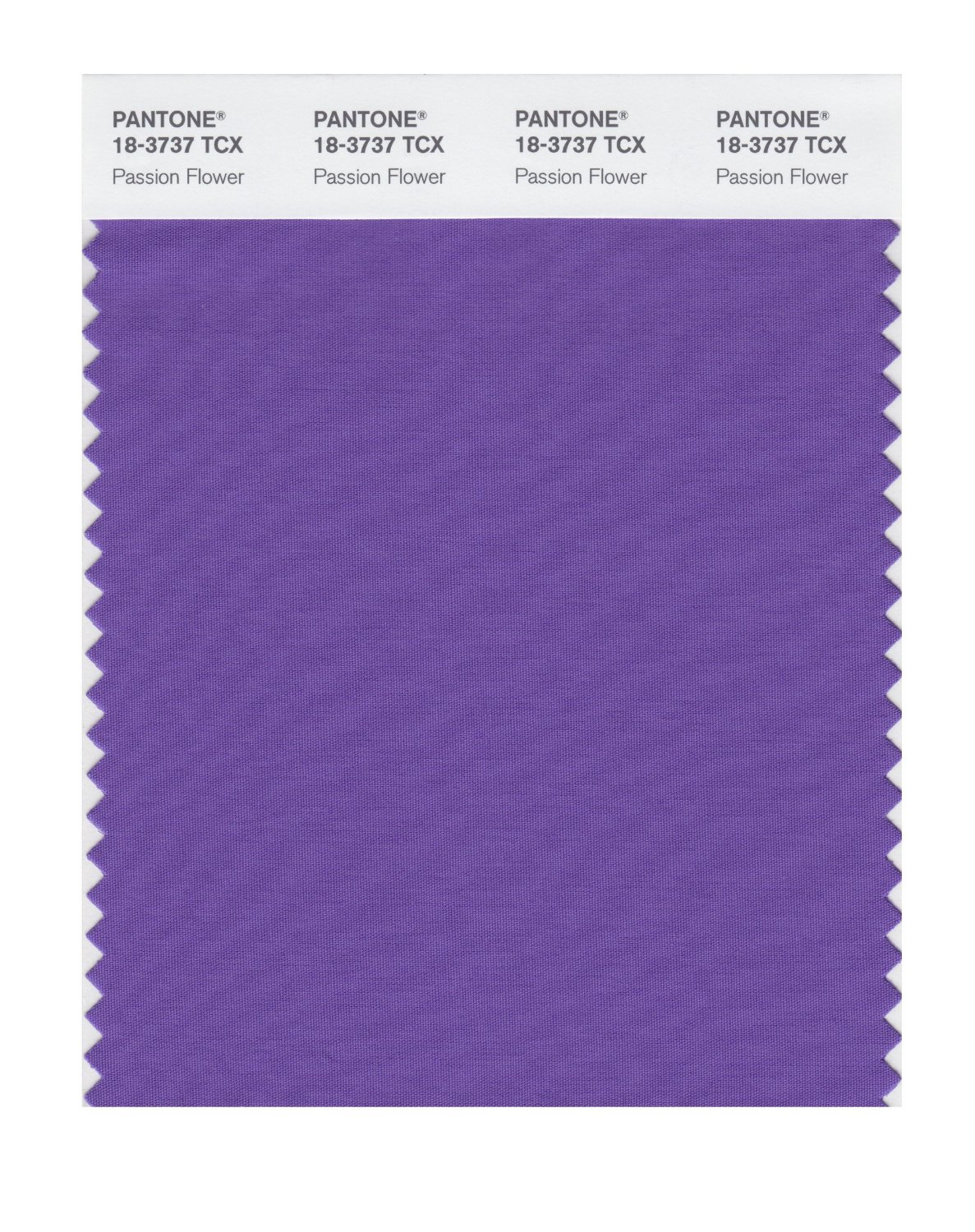 Pantone Smart Swatch 18-3737 Passion Flower